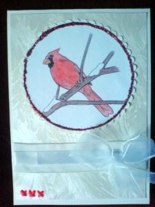 kardinal_weiß-rot